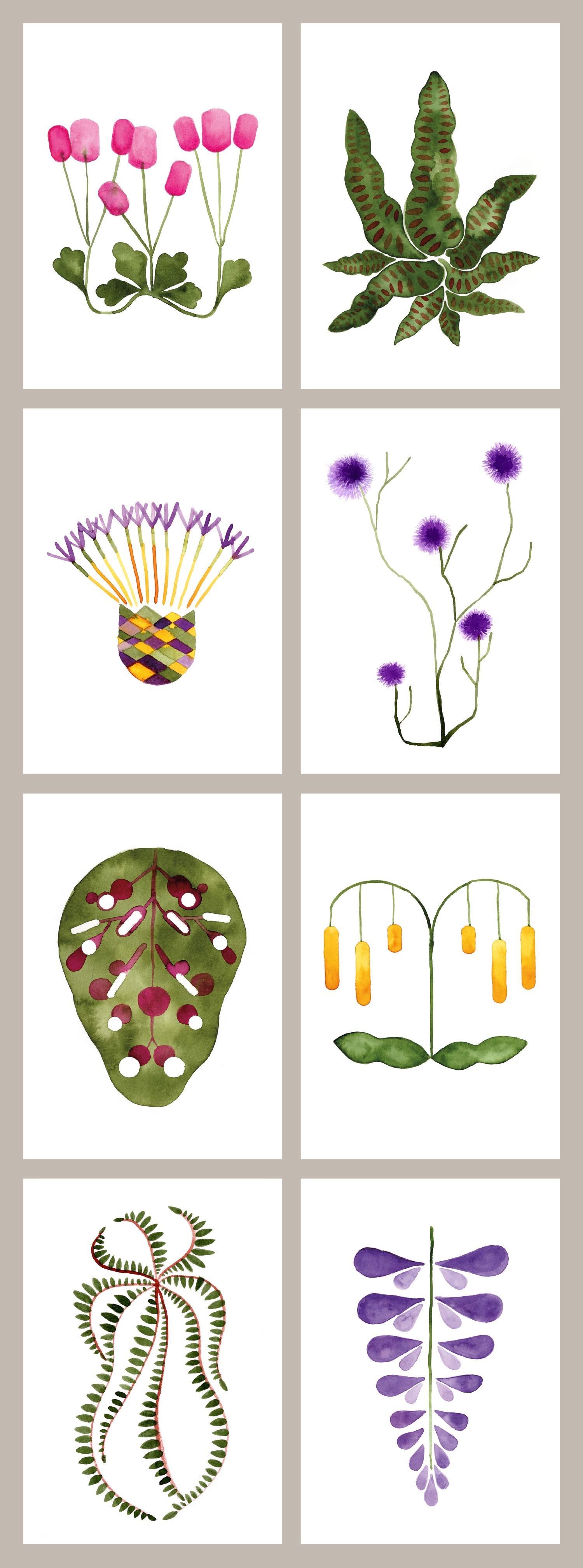 Cartes plantes
